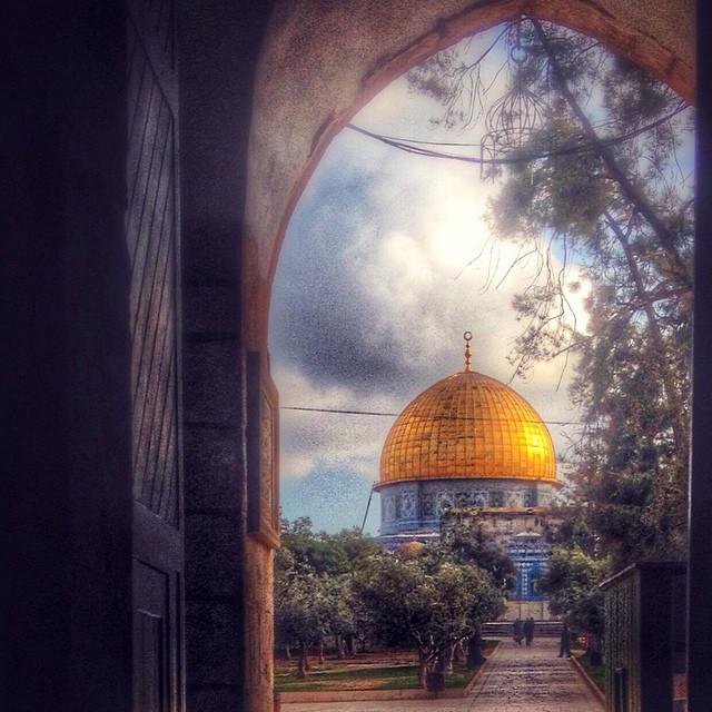 القدس لراجعون... bntpal_1444931470_62
