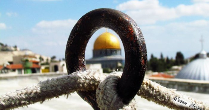 القدس لراجعون... bntpal_1444931472_21