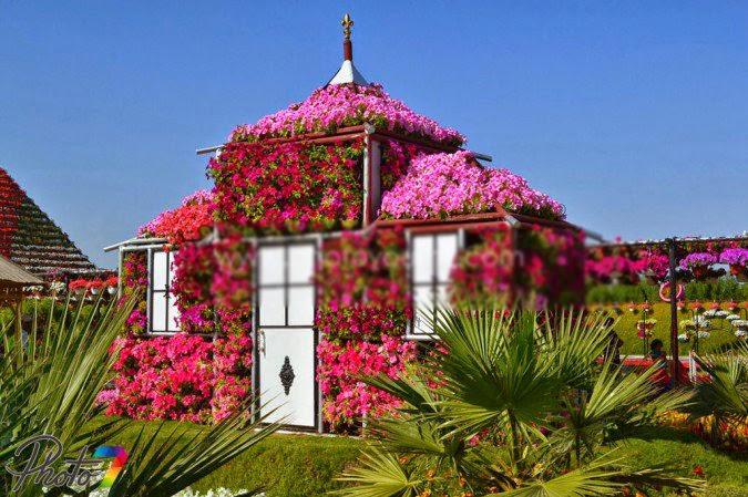 بيوت تزينها الزهور بشكل خيالي bntpal_1445633892_63