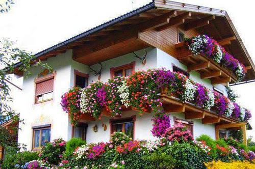 بيوت تزينها الزهور بشكل خيالي bntpal_1445633895_62