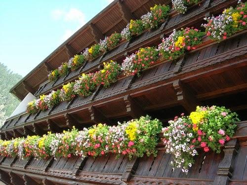 بيوت تزينها الزهور بشكل خيالي bntpal_1445633896_23