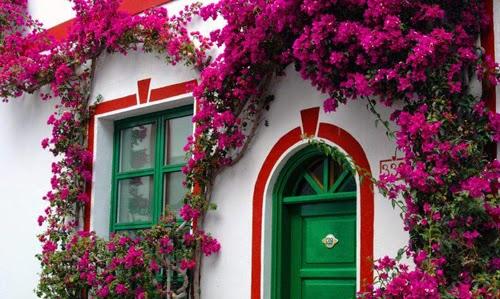 بيوت تزينها الزهور بشكل خيالي bntpal_1445633897_76