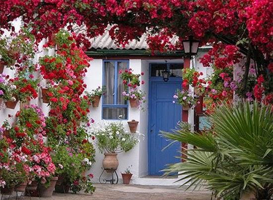 بيوت تزينها الزهور بشكل خيالي bntpal_1445633898_25
