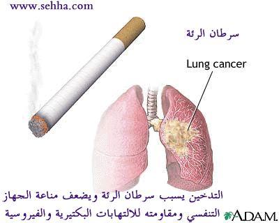 تعلم تعرف... وقاطع التدخين!! bntpal_1448796983_67
