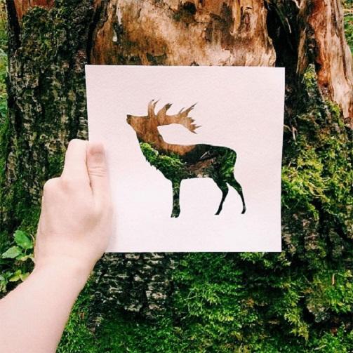 فنان يستعين بالطبيعة لإستكمال لوحاته bntpal_1449342597_19