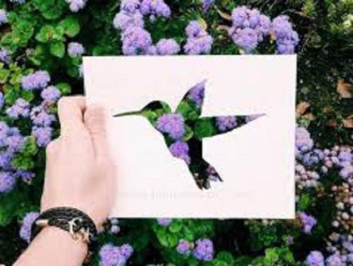 فنان يستعين بالطبيعة لإستكمال لوحاته bntpal_1449342597_25