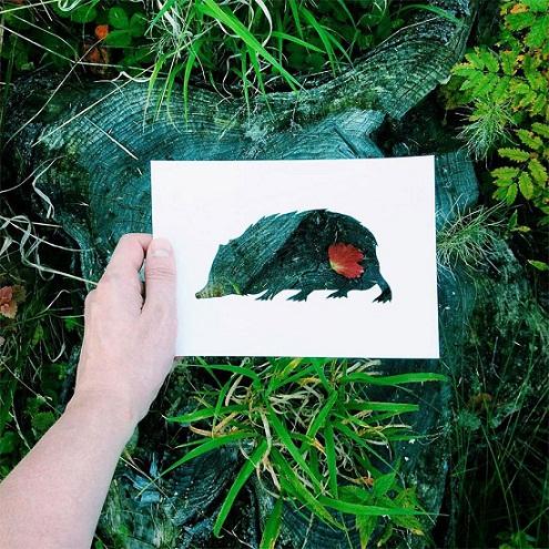 فنان يستعين بالطبيعة لإستكمال لوحاته bntpal_1449342597_37