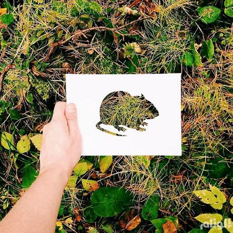 فنان يستعين بالطبيعة لإستكمال لوحاته bntpal_1449342597_72