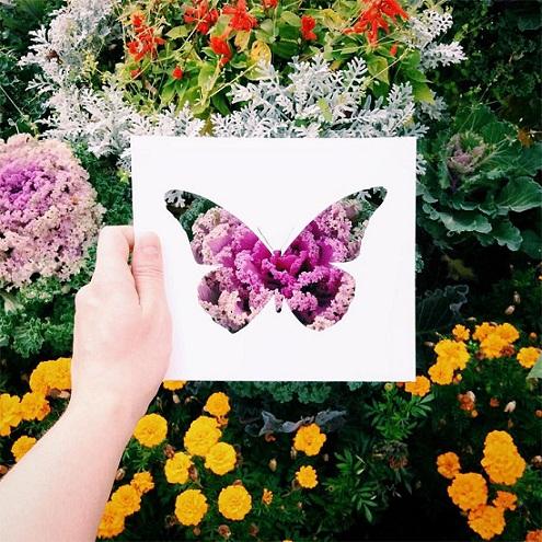 فنان يستعين بالطبيعة لإستكمال لوحاته bntpal_1449342597_76