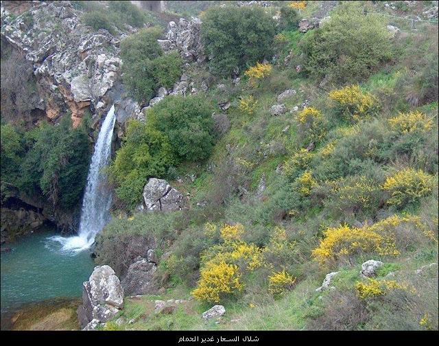 شلالات فلسطين والجولان bntpal_1450553480_87