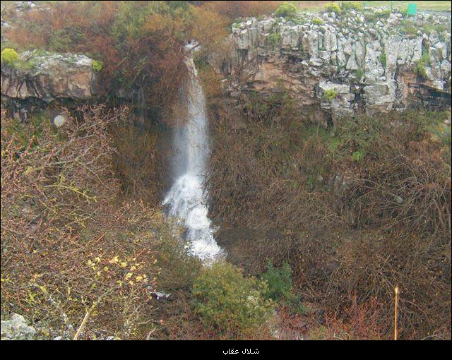 شلالات فلسطين والجولان bntpal_1450553482_71