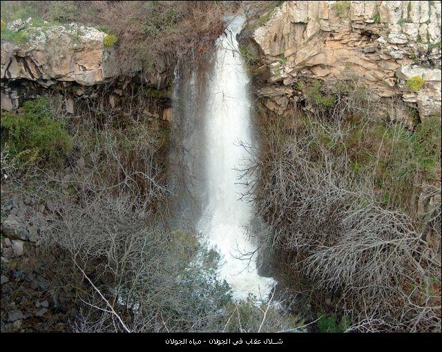 شلالات فلسطين والجولان bntpal_1450553483_82