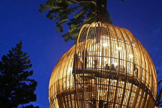 أغرب مطعم نيوزيلاندا وودز الشجرة bntpal_1452728148_68