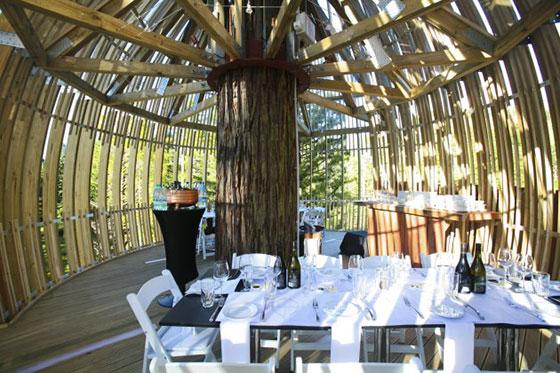 أغرب مطعم نيوزيلاندا وودز الشجرة bntpal_1452728148_80