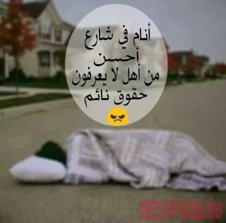يضحك bntpal_1452968945_61