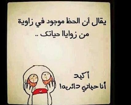 يضحك bntpal_1452968948_28