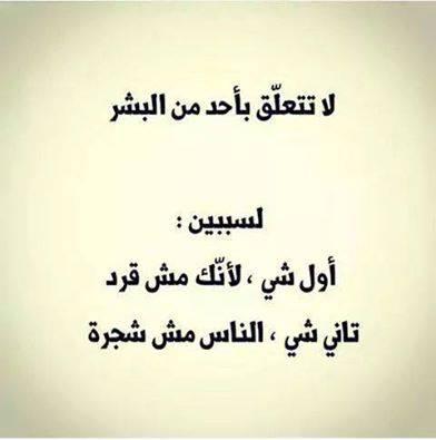 يضحك bntpal_1452968951_42