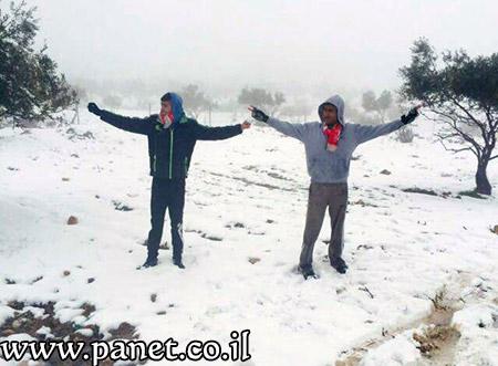الثلوج تزيّن جبال عراد النقب bntpal_1453840681_78