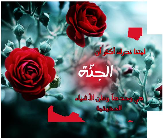 آلجنّة ♥ bntpal_1459094554_45