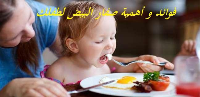 فوائد أهمية صفار البيض طفلك bntpal_1463988851_69
