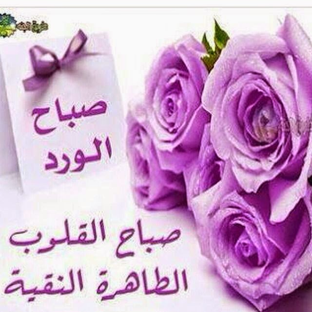 صباح الورد bntpal_1476165165_65