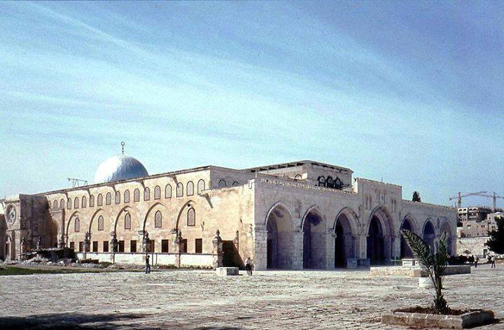 قديمة فلسطين لابد عربي يراها bntpal_1478503686_25