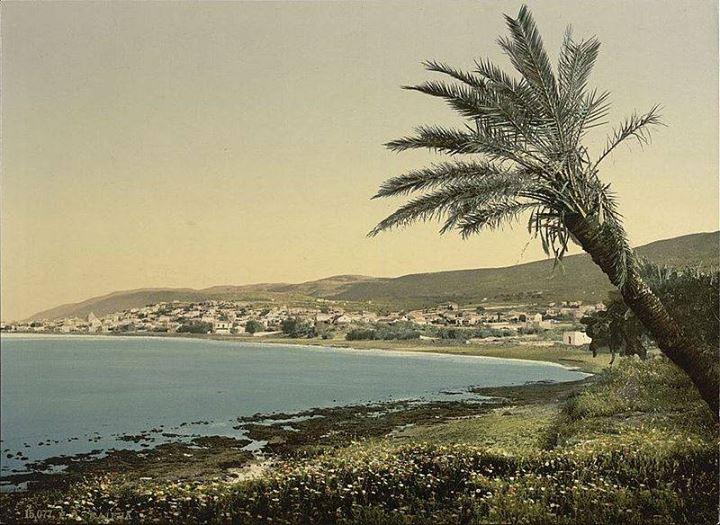 قديمة فلسطين لابد عربي يراها bntpal_1478503687_60
