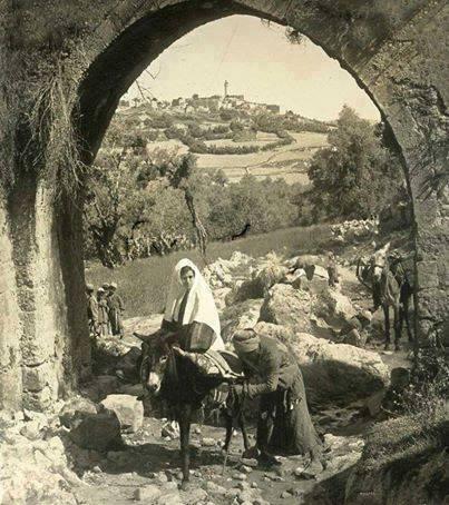 قديمة فلسطين لابد عربي يراها bntpal_1478503689_65