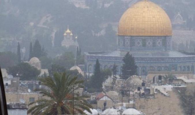 فلسطين تترقّب بشغف وشوق وحنين bntpal_1480410504_27
