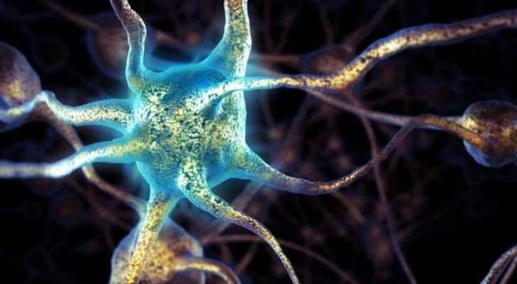 مواد تقتل خلايا المخ bntpal_1482837039_71