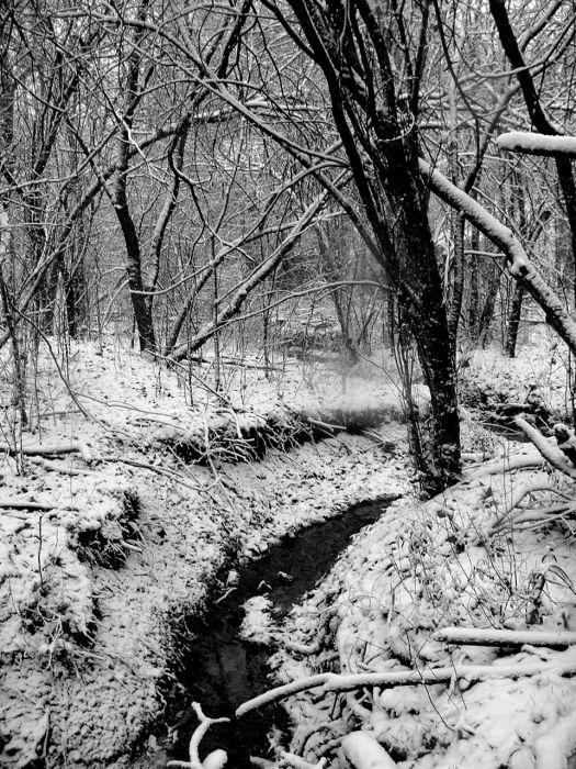 ويكثر الحنين الشتاء //صور للتصميم~ bntpal_1486225495_69