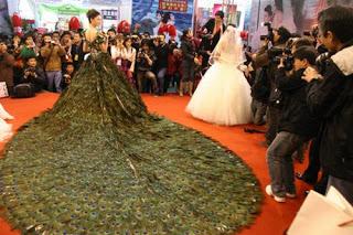 فستان زفاف 2009 ريشة طاووس bntpal_1491567948_43